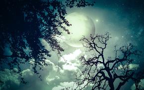 ночь, луна, фотошоп, фэнтези, деревья, ветки