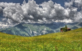 mountain, flowers, nature, grassland, house