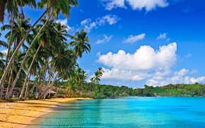 ocean, resort, summer, palm trees, beach