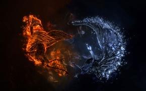 огонь, птицы, вода, абстрактные