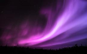 aurorae, night, stars