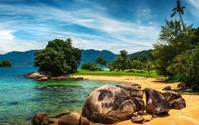 mountain, nature, beautiful, palm trees, tropics