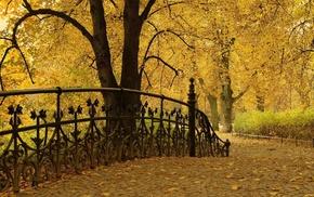 листва, дорожка, красота, осень, парк, ковка