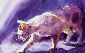 artwork, cat