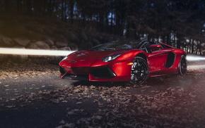 leaves, road, red, supercar, sportcar