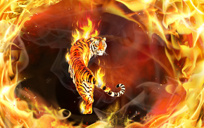 fire, 3D, photoshop, tiger, flame