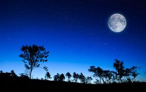 звезды, природа, деревья, красивые, луна, вечер