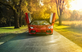 nature, supercar, road, autumn, cars