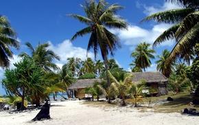 берег, тропики, песок, дом и уют, пальмы