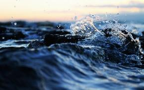 water, macro, splash, nature, photo
