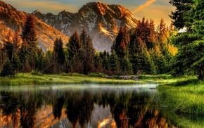 sunset, reflection, forest, nature, river