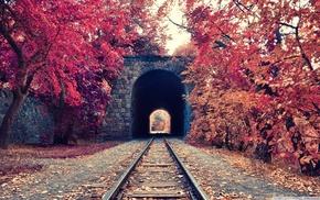 железная дорога, деревья, туннель