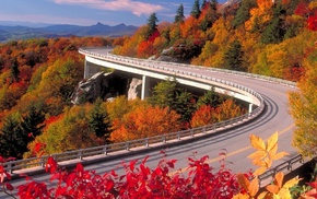 trees, road, nature, autumn, sky