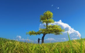 поле, небо, дерево, лето, пейзаж
