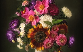 flowers, vase, background, still life