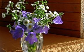 chamomile, Sun, vase, bells, still life