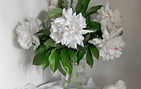 vase, beautiful, flowers, still life