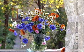 window, flowers, still life, vase