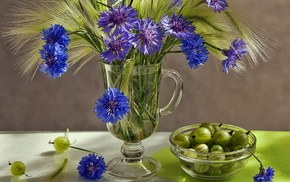wineglass, still life, flowers, stunner