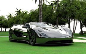 palm trees, supercar, cars, auto