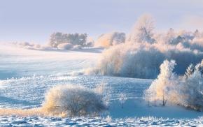 sky, beautiful, snow, frost, Sun, nature, winter