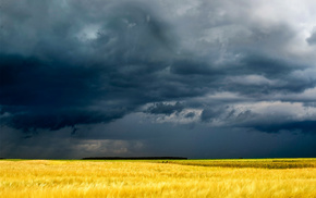 nature, cloudy, field, Ukraine