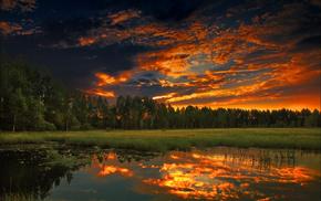 лес, река, небо, березы, природа, закат