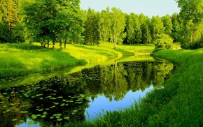park, river, pond, trees, forest