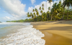 beach, ocean, tropics, summer, nature