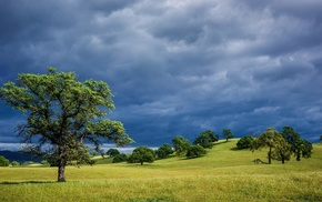 sky, hills, trees, cloudy, summer