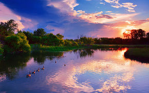 pond, clouds, sky, trees, summer