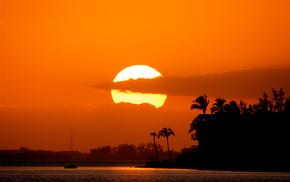 sunset, nature, beach, stunner, palm trees