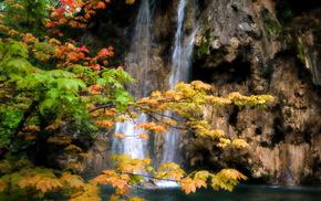nature, trees, waterfall, rock, foliage