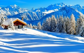 house, snow, nature, Christmas tree, mountain