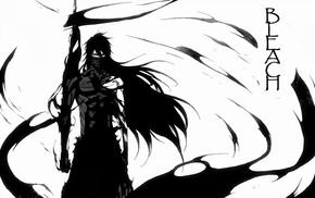 Mugetsu, Kurosaki Ichigo, anime, Bleach