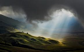 hills, greenery, Sun, nature