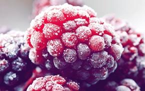 food, raspberries