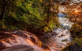 waterfall, trees, water, foliage, stunner