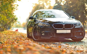 tuning, leaves, BMW, cars, autumn