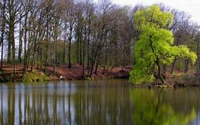 река, вода, лето, деревья, природа