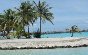 summer, tropics, sea, beach