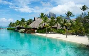 summer, sea, beach, tropics