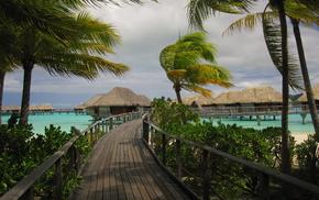 beach, sea, summer, tropics