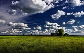 greenery, nature, clouds, summer, sky