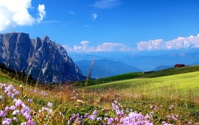 summer, Sun, nature