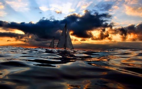 sea, sailfish, nature, sunset