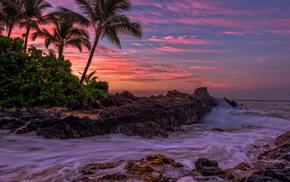 stunner, tropics, palm trees, storm, sea