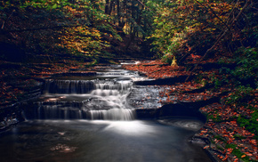 autumn, river, trees, forest, nature