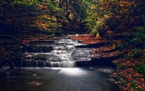 каскады, осень, река, деревья, лес, природа