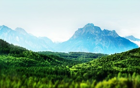 nature, clear sky, landscape, mountain, forest, tilt shift